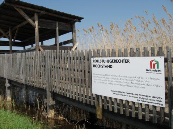 Rollstuhlgerechter Hochstand am Neusiedler See - Österreich