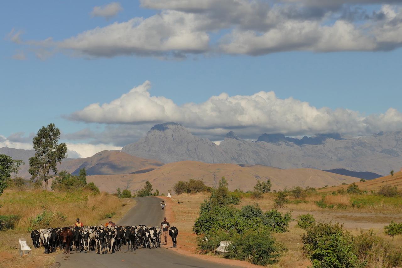 Straße auf Madagaskar