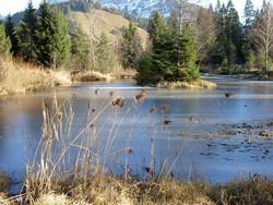 Das Biotop Wissenegg in der UNESCO-Biosphäre Entlebuch in der Schweiz